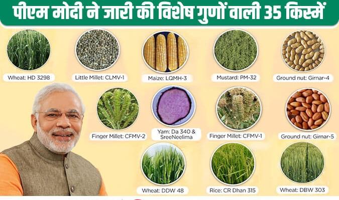 पीएम मोदी ने जारी की विभिन्न फसलों की विशेष गुणों वाली 35 किस्में