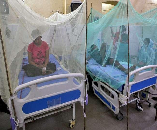 कई राज्यों में डेंगू बना खतरा, सर्तक रहें और हल्के बुखार में ही कराएं जांच